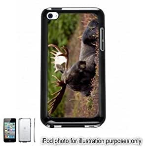 Bull Moose Forest Photo Apple iPod 4 Touch Hard Case Cover Shell Black 4th Generation