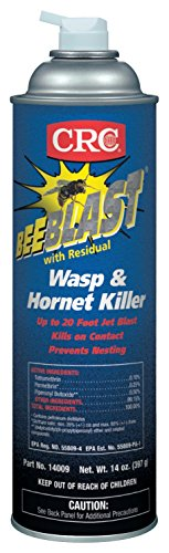 CRC Bee Blast with Residual Wasp and Hornet (Bee Wasp Spray)