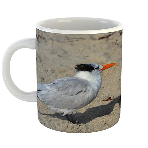 Westlake Art - Beak Bird - 11oz Coffee Cup Mug - Modern Pict