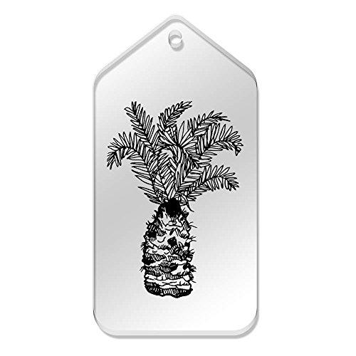 tree' Azeeda tg00031372 Tag Large 99 51 X 'palm Mm Cancella 10 Of PrrIpC