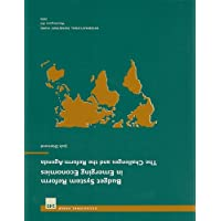 Budget System Reform in Emerging Economies: The Challenges and the Reform Agenda: 245 (Occasional paper)