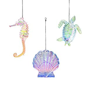 418J85GfHCL._SS300_ 100+ Best Seashell Christmas Ornaments
