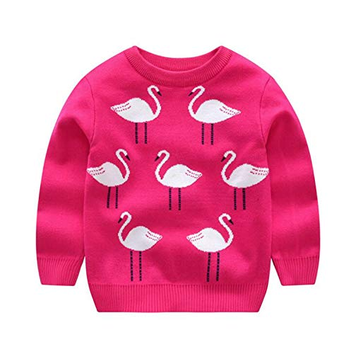 Gail Jonson Autumn Winter New Embroidered Swan Princess Girls Sweater Kids Cotton Coat Pullover Knitted Rose 2 5T by Gail Jonson