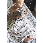 Baby-Laundry-Aviator-Airplane-Minky-Baby-Blanket-27×36