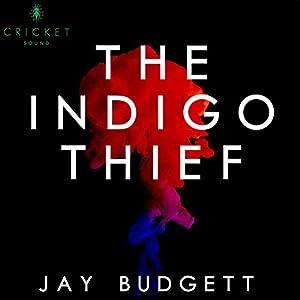 The Indigo Thief Audiobook