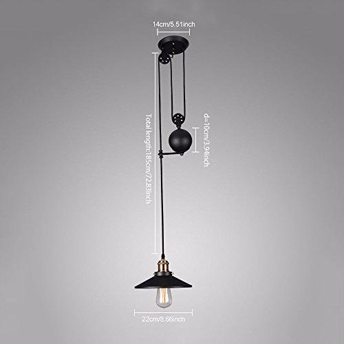 (Tray Pulldown Ceiling Fixture Pendant Light Chandelier Lamp Retro Industrial)