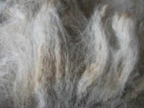 - Gray Alpaca Handspinning Felting Fiber Fleece Wool
