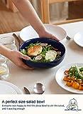 LE TAUCI Pasta Bowls Reactive Glaze Ceramic Salad