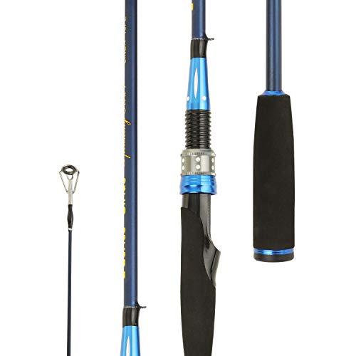 (Entsport Sirius 2-Piece Spinning Rod Graphite Portable Spinning Fishing Rod Inshore Spinning Pole Freshwater Spin Rod (8-20-Pound Test) 7' Light)