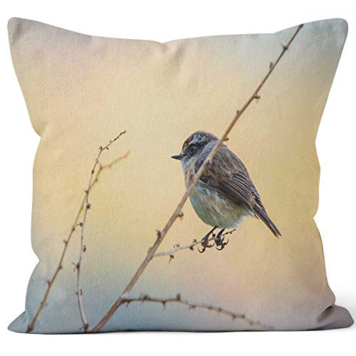 Nine City Tec Tec Bird in la Reunion Island Throw Pillow Cover,HD Printing for Sofa Couch Car Bedroom Living Room - I-tec Leather