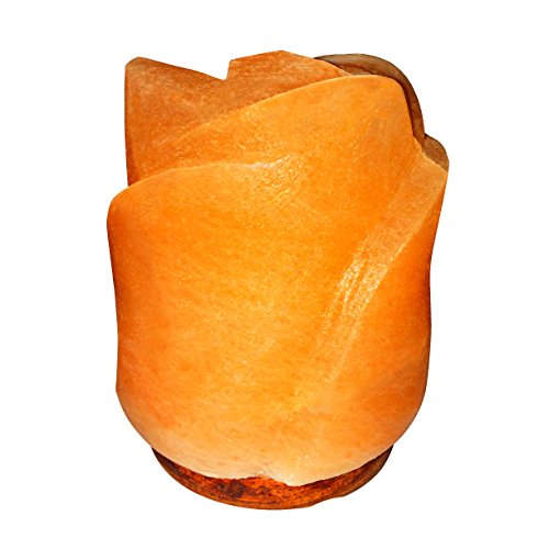 Natural Himalayan Salt Lamp on Solid Neem Wood Base | Romantic Rose Flower | Dual Voltage (AC 230V/110V), UL Listed, 6' Cord & Dimmer Switch, a Great Gift