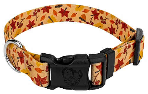 (Country Brook Petz | Deluxe Fall Foliage Dog Collar - Small)