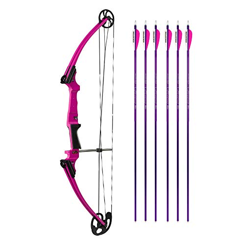 Genesis Bows Original Bow with Adjustable Draw Weight for Beginner Archers of All Ages, and Six Easton NASP Arrows Kit (Purple, Right Hand)