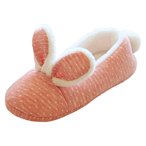 Eastlion Women's Cute Winter Indoor Anti-skid Keep Warm Slipper Shoes Fleece Slippers House Slippers Home Shoes LOjUv