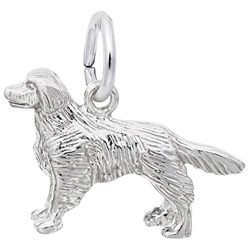 Rembrandt Charms Golden Retriever Charm, Sterling Silver