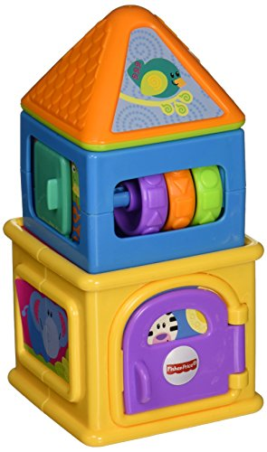 Top 10 Fisher Price Stacking Activity Home