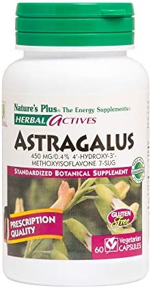 NaturesPlus Herbal Actives Astragalus – 450 mg, 60 Vegan Capsules – Standardized Herbal Supplement, Supports Heart Immune Health – Hypoallergenic, Vegetarian, Gluten-Free – 60 Servings