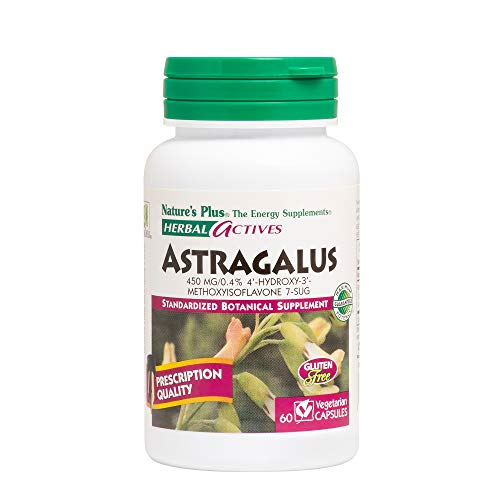 Astragalus 60 Capsules - Natures Plus Herbal Actives Astragalus - 450 mg, 60 Vegan Capsules - Standardized Herbal Supplement, Supports Heart & Immune Health - Vegetarian, Gluten Free - 60 Servings