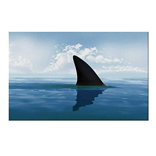 (YOLIYANA Shark Durable Door Mat,Shark Fish Fin Over The Sea Surface Danger Caution Themed Picture Decorative for Home Office,19.6