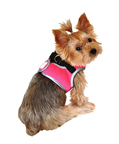 neon harness for dogs - 5