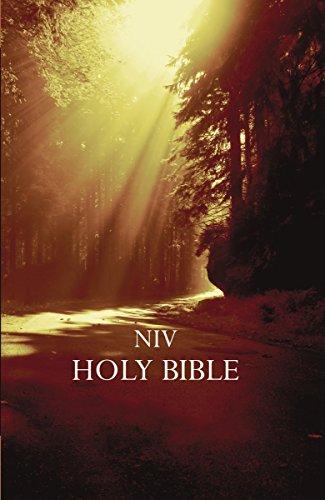NIV, Outreach Bible, Paperback, Brown
