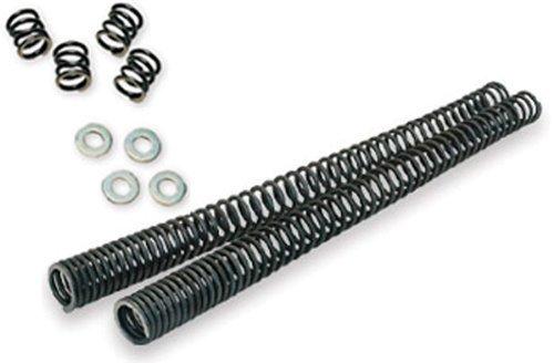 Fork Lowering Spring Kit - 4