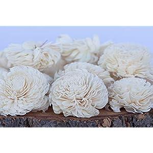 """Bloem, Inc. Large Chorki Sola Flowers, 3"""" Size, Set of 10 93"""