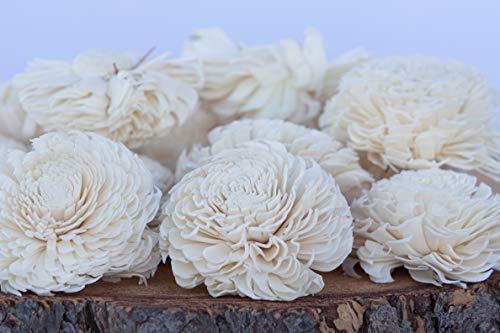 Bloem, Inc. Large Chorki Sola Flowers, 3