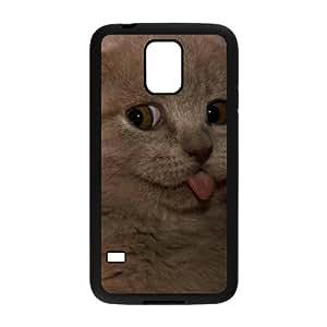 Winfors Scottish Fold Cat Phone Case For Samsung Galaxy S5 i9600 [Pattern-6]