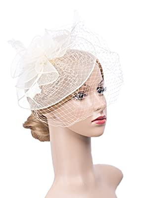 Elegant Women Lady Girls Feather Net and Veil Fascinator Hair Clip Hat Hair Accessories Clip