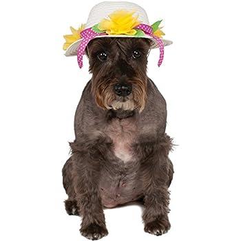 Kentucky Derby/Easter Bonnet Pet Hat, Small/Medium