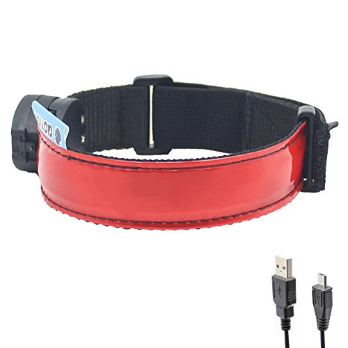 Glovion LED Armband - USB Rechargeable LED Running Armband Light- High Visibility Safety Gear for Night Running, Jogging & Cycling - Red