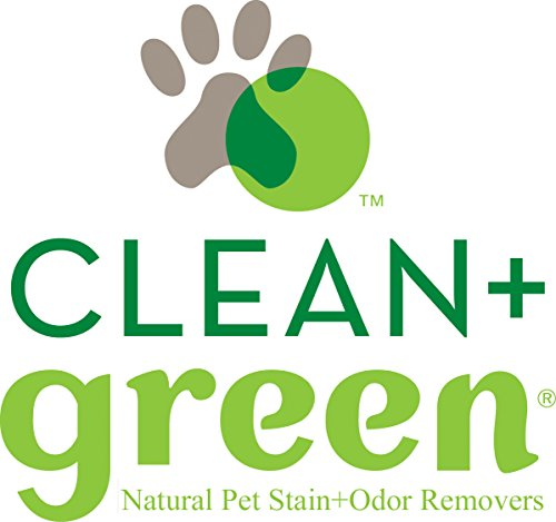 Image of Clean+Green Professional Strength Carpet, Area Rugs, Upholstery Pet Odor Eliminator and Stain Remover for Dogs, 14 Ounce