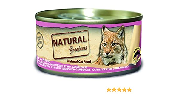 Natural Greatness Greatness Comida Húmeda para Gatos de Filete de ...