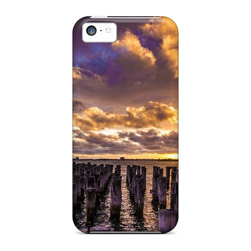 Love This World Tpu Cover Case For Iphone 5c ()