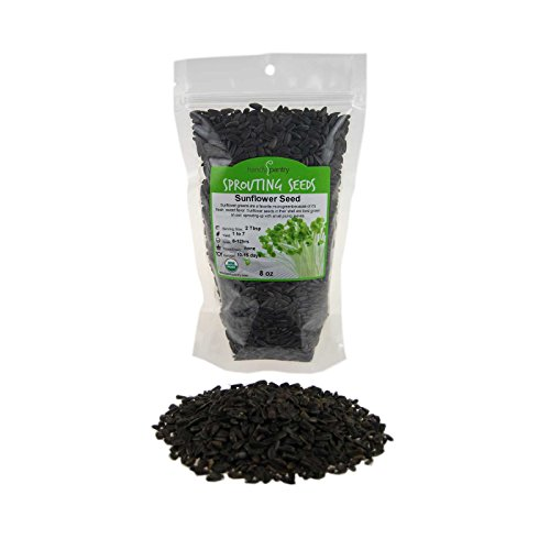 hulled sunflower sprouting seeds - 1