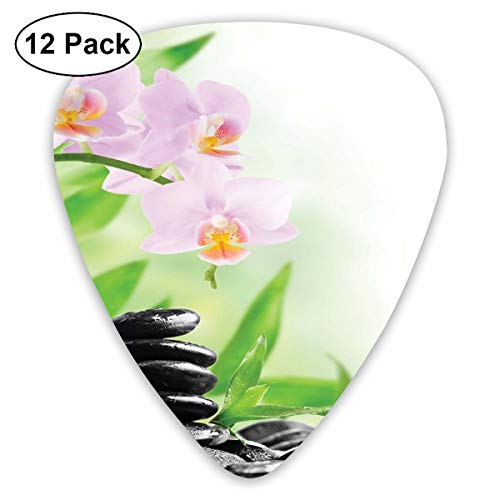 - Guitar Picks 12-Pack,Zen Basalt Stones And Orchid With Dew Peaceful Nature Theraphy Massage Meditation