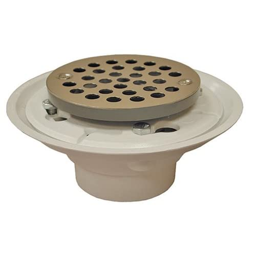 durable modeling Plumbest D50-002 Shower Stall or Floor Drain, Polished Brass