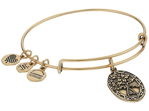 Alex and Ani Because I love you, Friend II Expandable Rafaelian Silver-Tone Bangle Bracelet