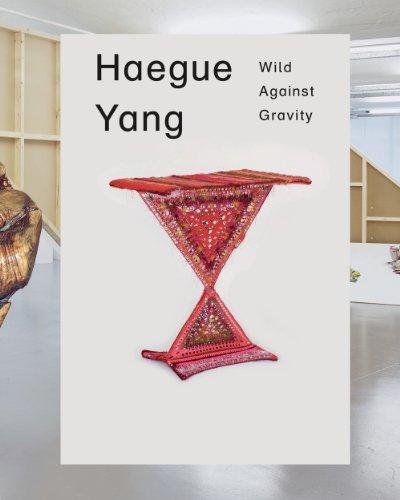 Haegue Yang: Wild Against Gravity (Modern Art Oxford: Exhibition Catalogues)