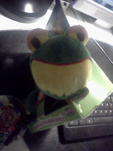 iFlops Frog Universal Headphones for Kids Fully Adjustable Multi Purpose