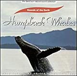 Sounds of the Earth: Humpback Whales