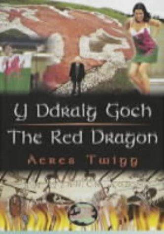 Y Ddraig Goch/The Red Dragon (Cyfres Cip Ar Gymru / Wonder Wales)