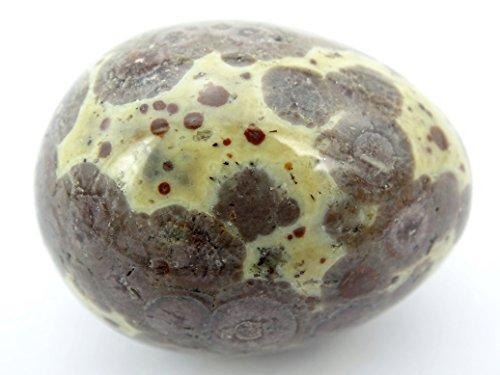 jennysun2010 1 piece Natural Leopard Skin Jasper Gemstone Egg Crystal Healing Sphere Massage Finger Exercise 35x40mm