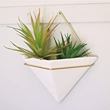 Trigg Hanging Planter Vase & Geometric Wall Decor Container - Great For Succulent Plants, Air Plant, Mini Cactus, Faux Plants and More, White Ceramic/Brass
