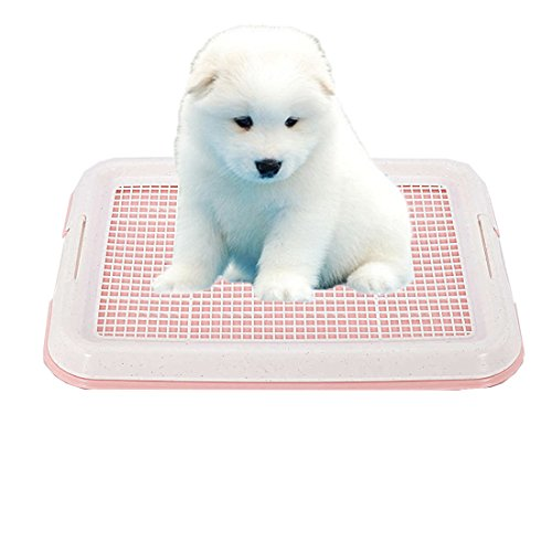 GreeSuit Pad Holder Toilet Tray Mesh Training Mesh Pad Holder for Puppy Dog...