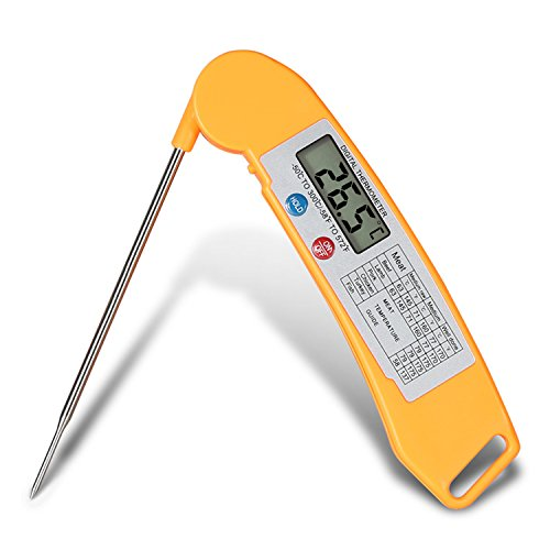Thermometer WinTech Accurate Wireless Reference