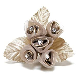 "6-1"" Sheer Champagne Colored Flower Bouquets with Rhinestone Stamens 67"