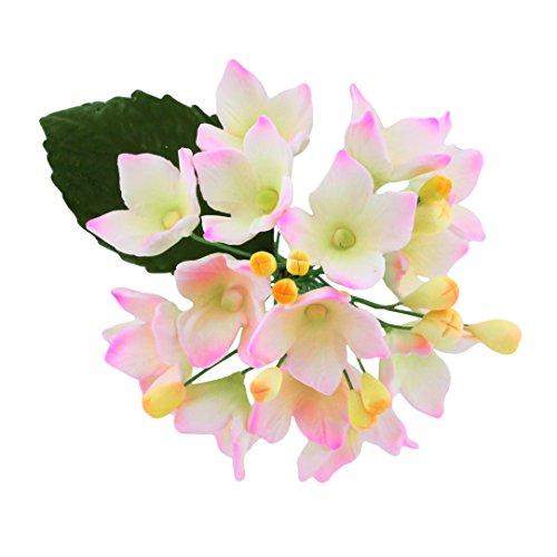 pray White/Pink, 4 Count by Chef Alan Tetreault (Hydrangea Sugar)