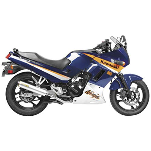 Two Brothers Racing (005-2410407V) Standard Series M-2 Carbon Fiber Canister Slip-On Exhaust System